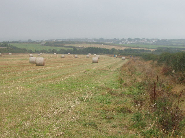 Fields at Trethillick