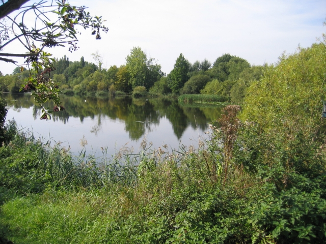Langford Pits, Beds
