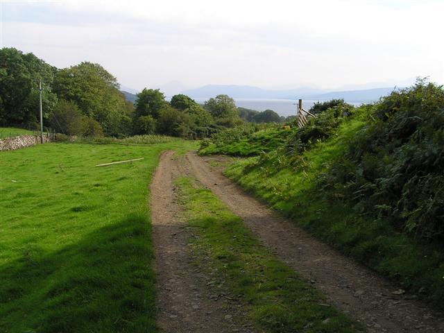 Farmland and trees of Drimnin