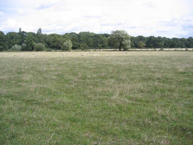 White Moors, Shenton, Leics