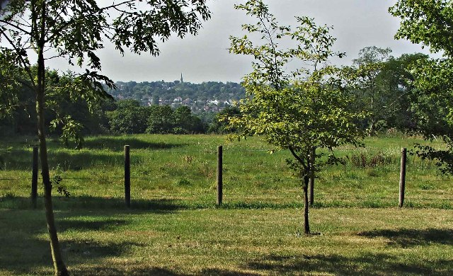 Oakhill Farm looking south towards Brunswick Park