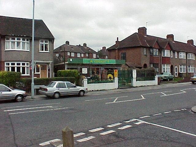 Verdant Lane Nursery