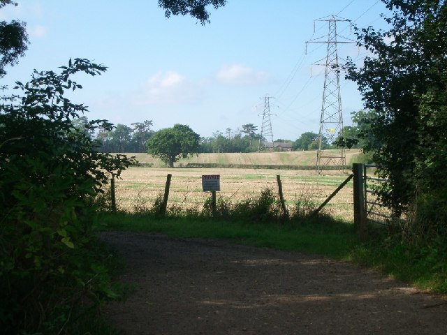 Fields and pylons by the bridleway south of Cobham