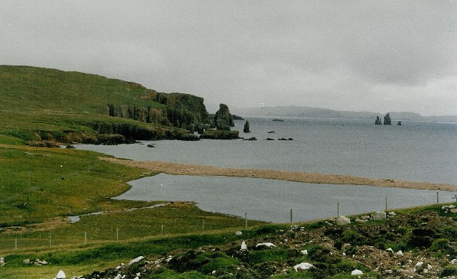 Brae Wick and the Drongs