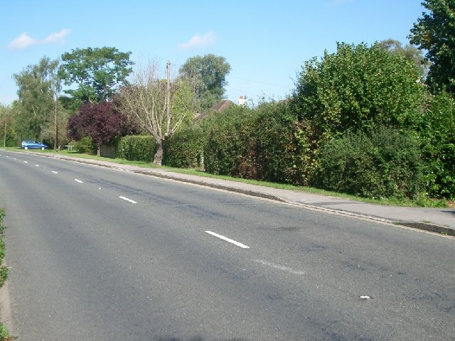 Effingham Common Road