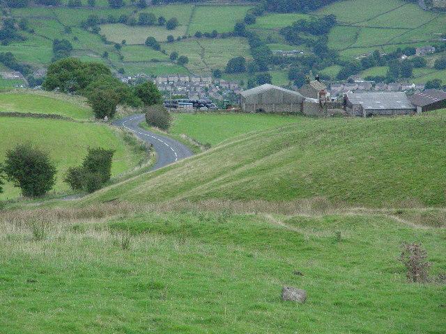 Long Green Head Farm