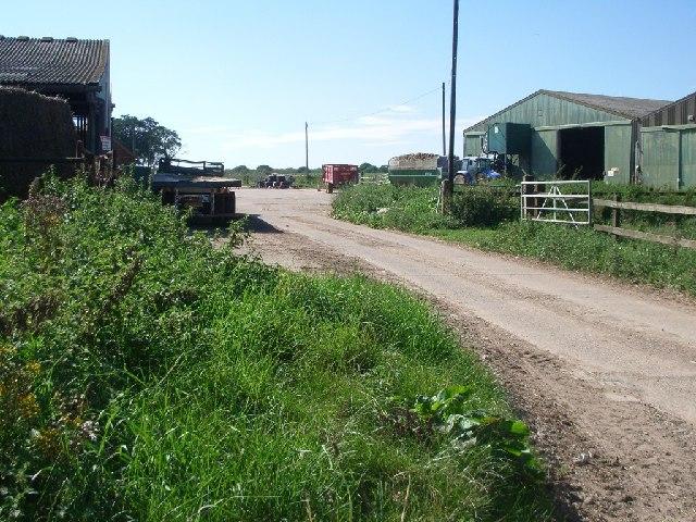 Jury Farm
