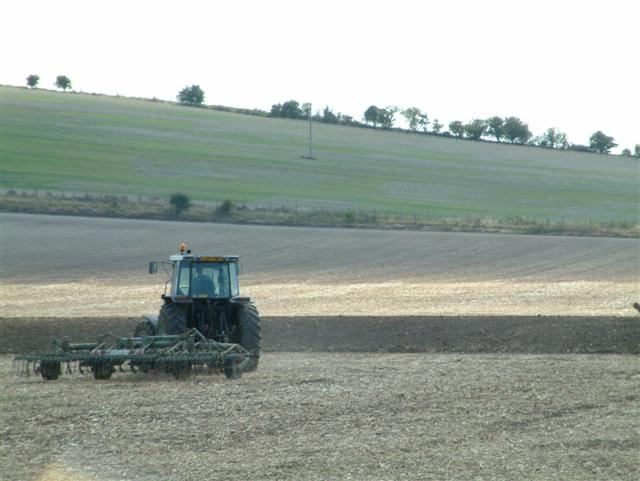 Farming on White Hill