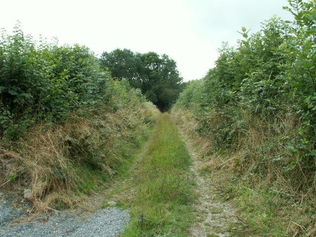 Trackway, Cwm Perlla