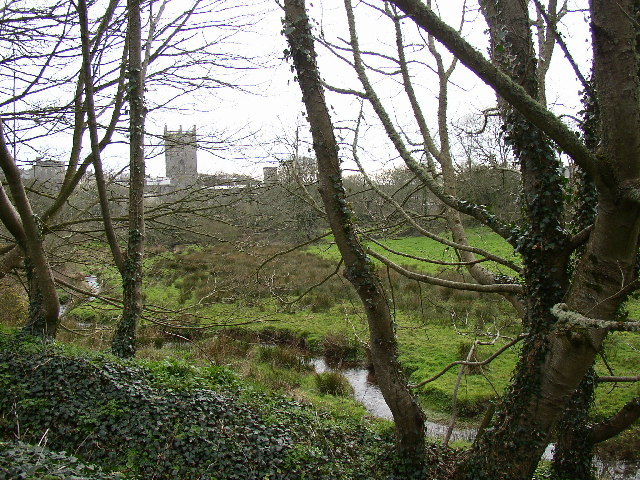 St David's Cathedral from Quickwell Hill