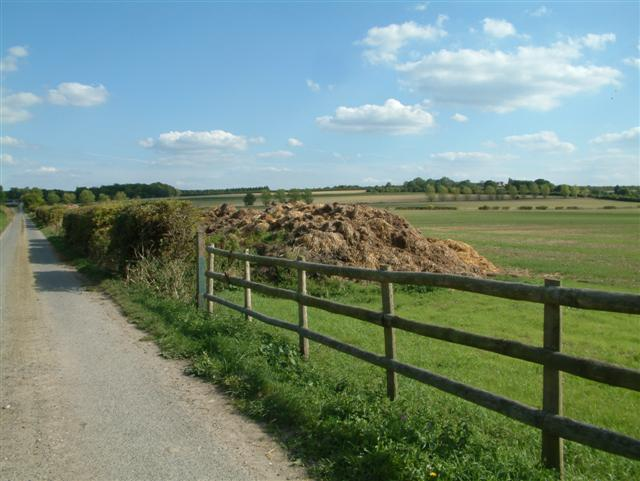 The Road to Coldharbour Farm