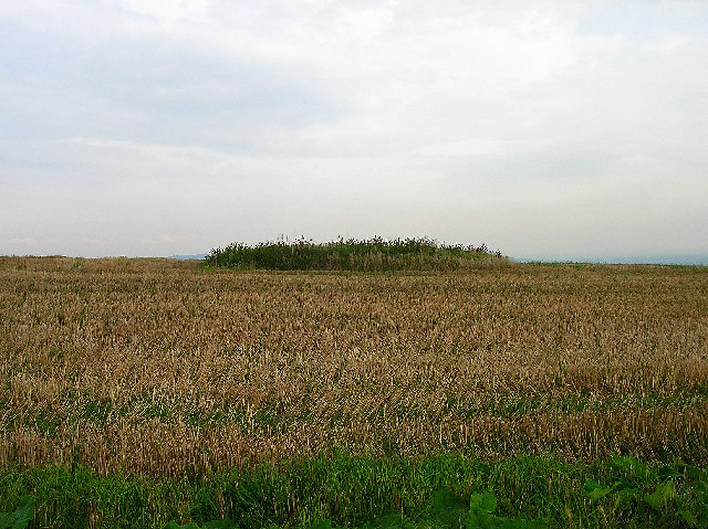Tumulus, Front Hill