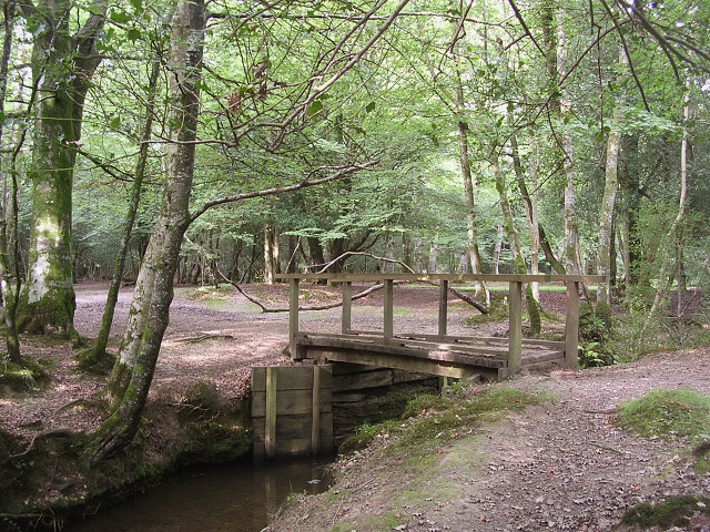 Footbridge over Bartley Water, west of Busketts Lawn Inclosure, New Forest