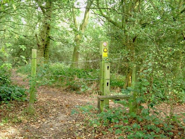 Willow Park Stile