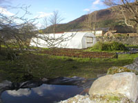 Polytunnel at Leckmelm Farm