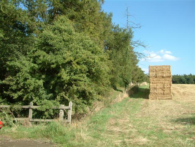 The Ridgeway to Nuffield