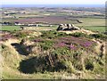 SW3827 : View south from Carn Brea beacon, West Penwith by Jim Champion