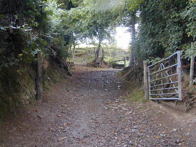Old farm lane