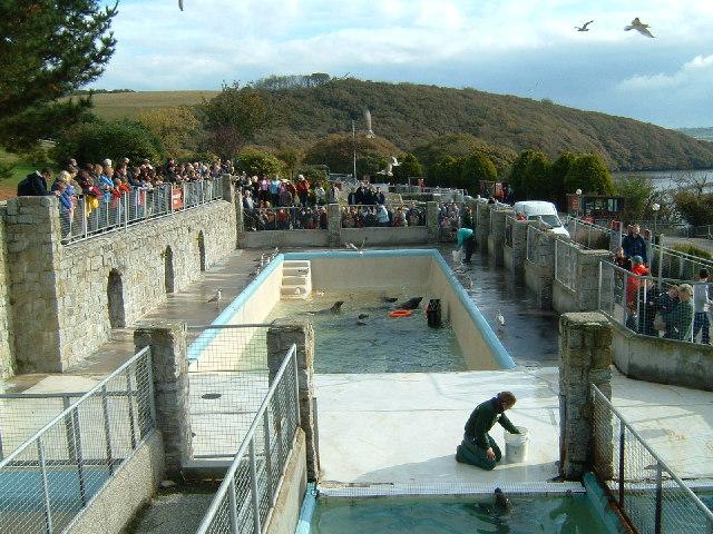 Seal Sanctuary at Gweek