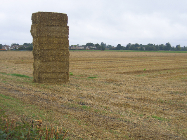 Temporary monument to farming, Newborough, Peterborough