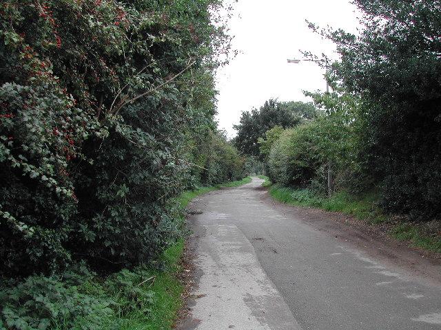 Bassingfield Lane, Bassingfield