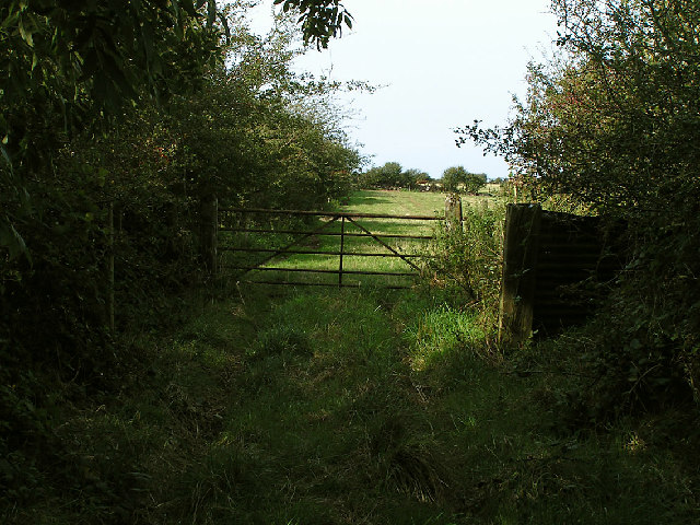 Field Gate, Whitelees Farm