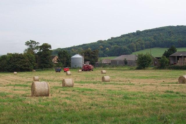 Great Barn Farm, Wiston
