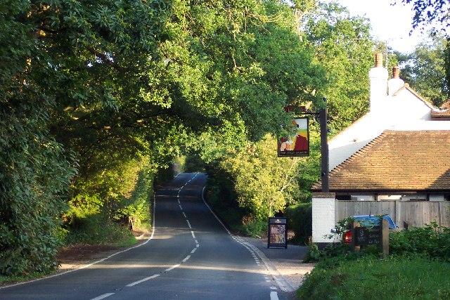 Burdenshott Road, Worplesdon