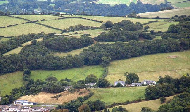 Gyffin Hillside