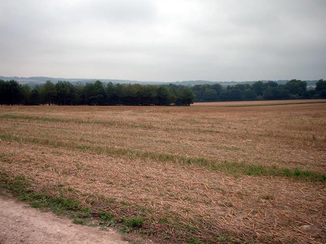 Farmland east of Andover Road
