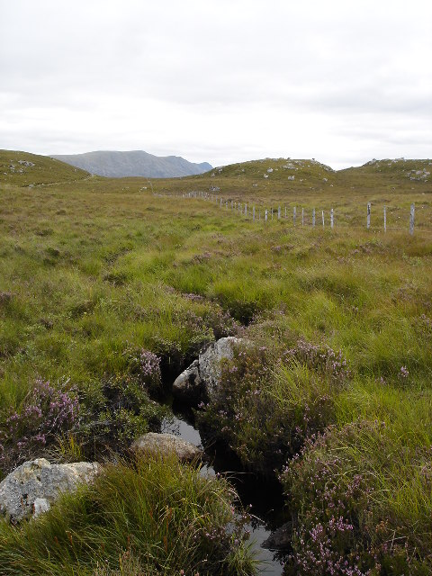 Unnamed shallow grassy valley