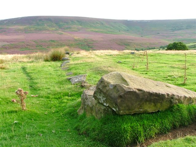 Ancient Field Boundary, Douglas Ridge