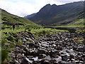 NG8927 : River Glennan by Peter Trant