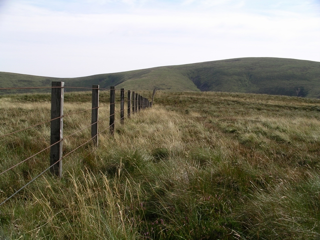 Summit, Moss Law