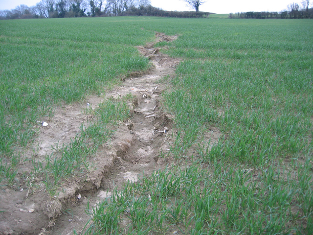 Soil erosion warmwell dorset rodney burton geograph for What is soil