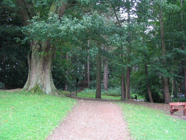 Woodland at Bramhall Hall