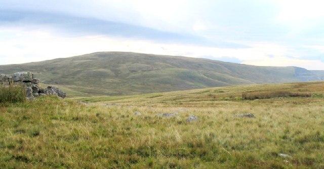 Northeast slope of Moel Gornach