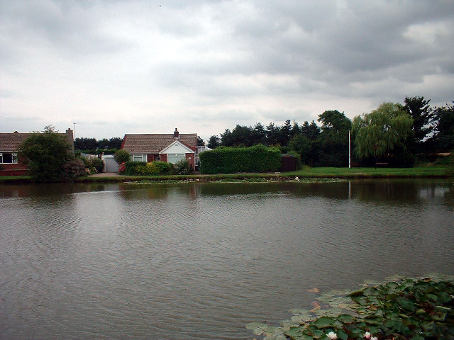 The Pond, Wootton