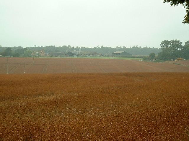 Radley Farm