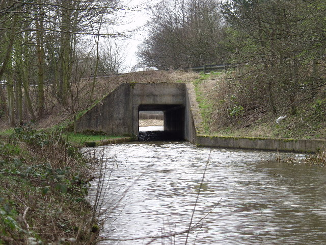 Montgomery Canal at Aber-miwl