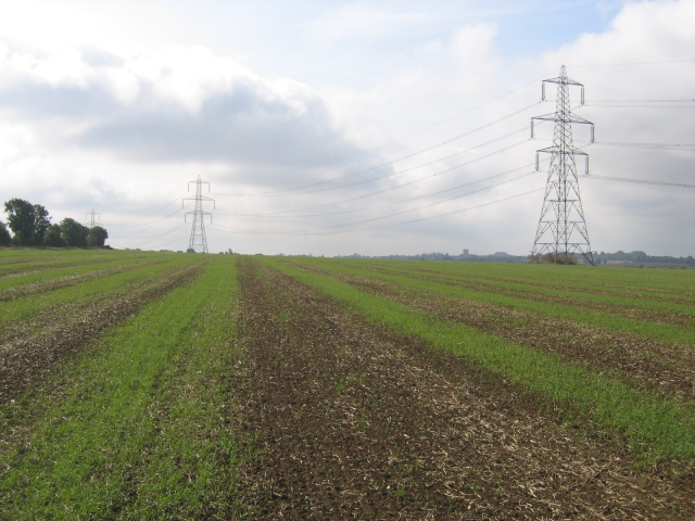 Farmland and pylons east of Biggleswade, Beds