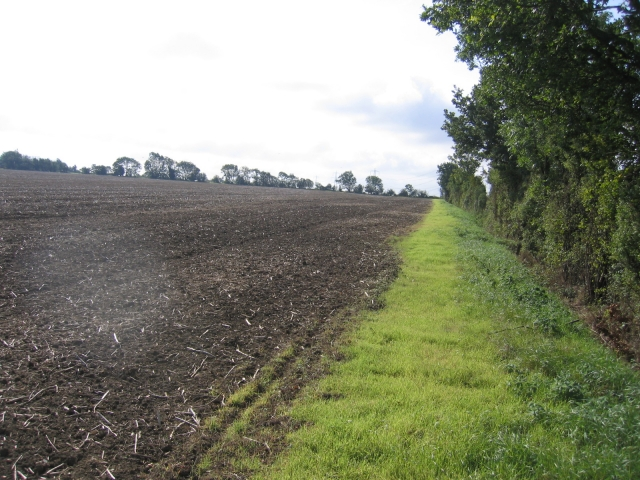 Farmland east of Biggleswade, Beds