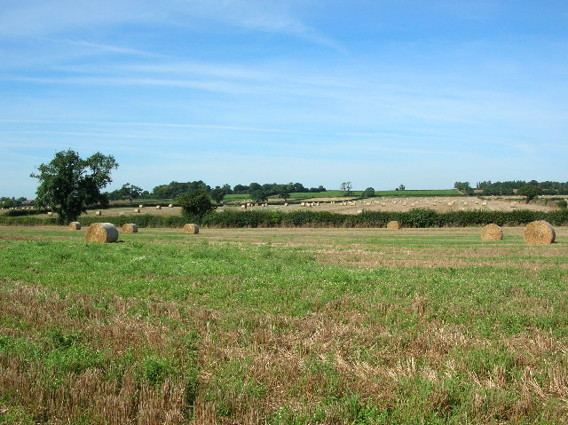 Cowslip Hill