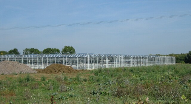 Glasshouses near Willersey