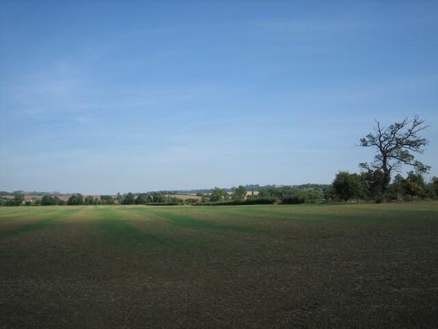 Fields near Aston-sub-Edge