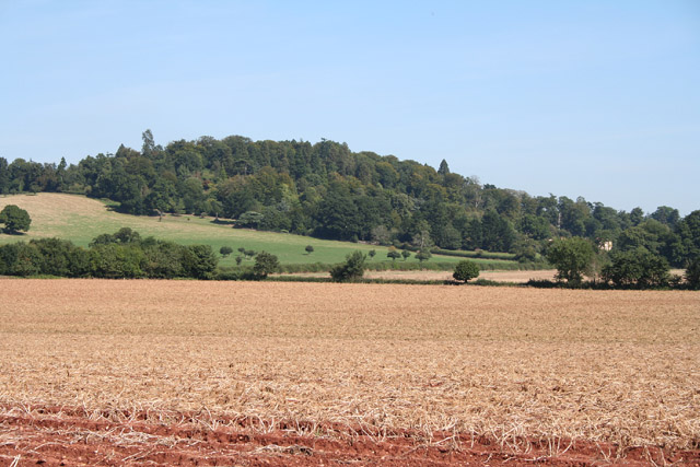 Broadclyst: north east to Killerton Park