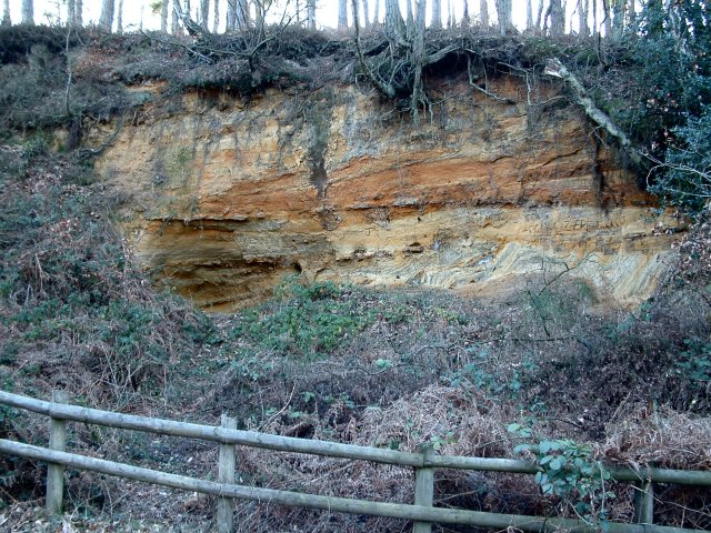 Old Quarry, Rogate, West Sussex