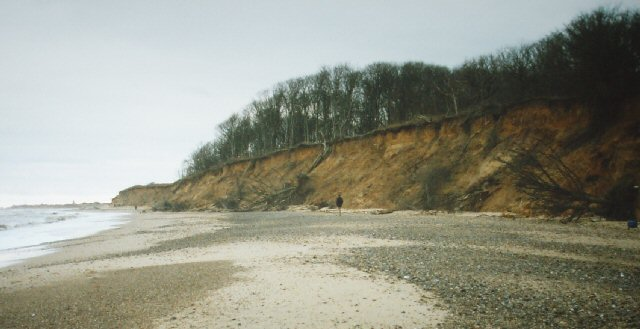 Cliffs at Easton Wood, near Covehithe, Suffolk