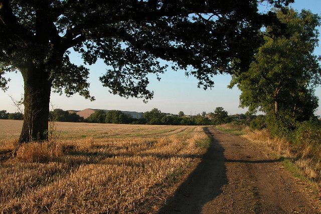 Stubble field on Bredon Fields Farm