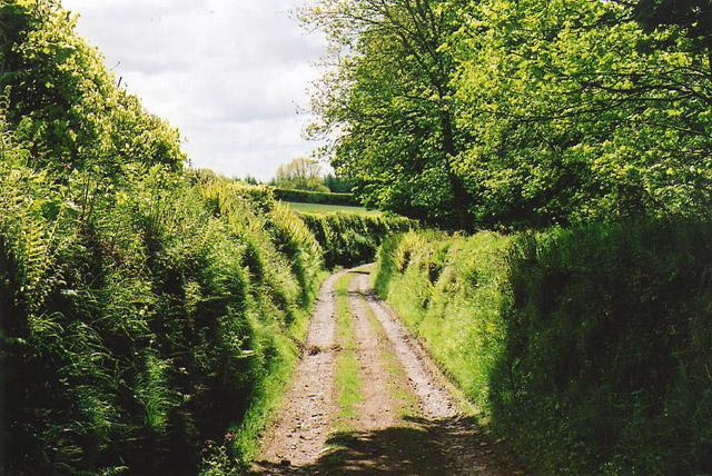 Dulverton: track running south to Jury Cross